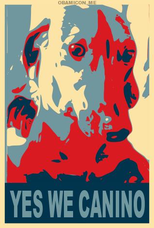 Cachorrada é com quem sabe e quem sabe tá aqui. Vote Edredon!